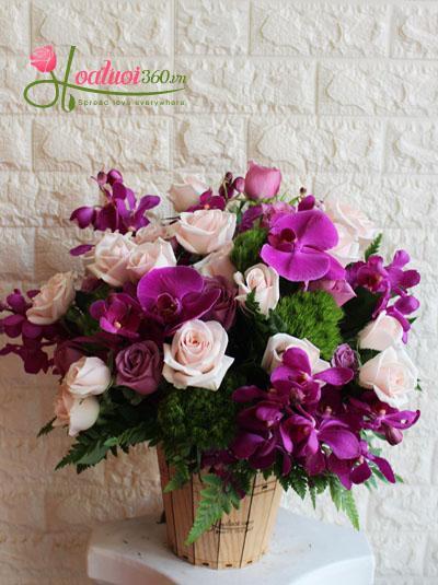 Hoa chúc mừng đẹp và lạ